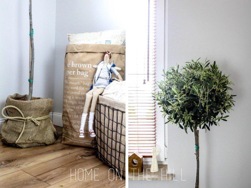 drzewko-oliwne-blog-1
