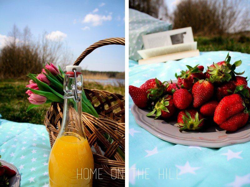 piknik zdjęcia