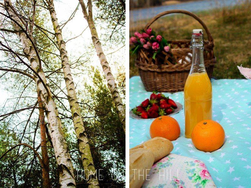 piknikowe inspiracje