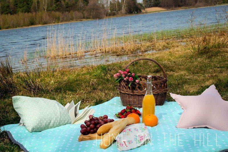 pled-piknikowy-1