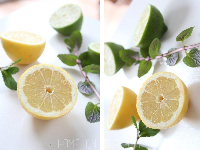 cytryna-limonka-1