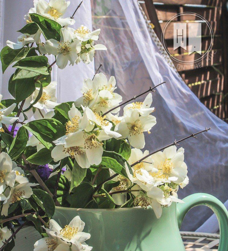 biale-kwiaty-1