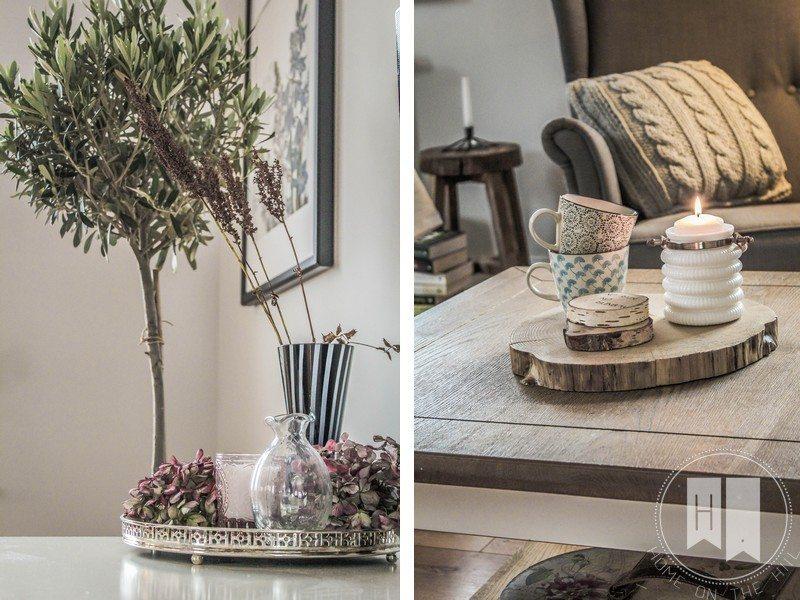 drzewko oliwne w domu