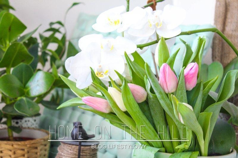 aranżacje-z-kwiatów