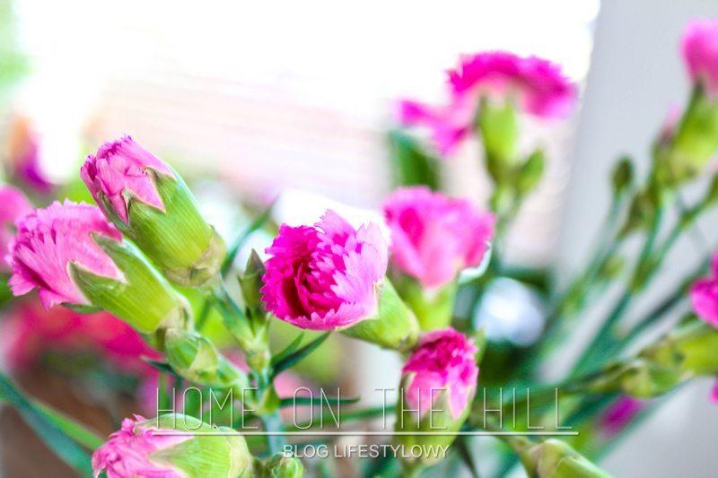 wiosna-w-domu