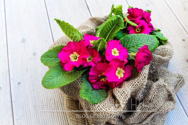 dekoracje-ogród-blog