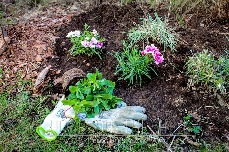 prace-w-ogródku