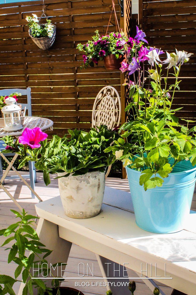 mały ogród aranżacje