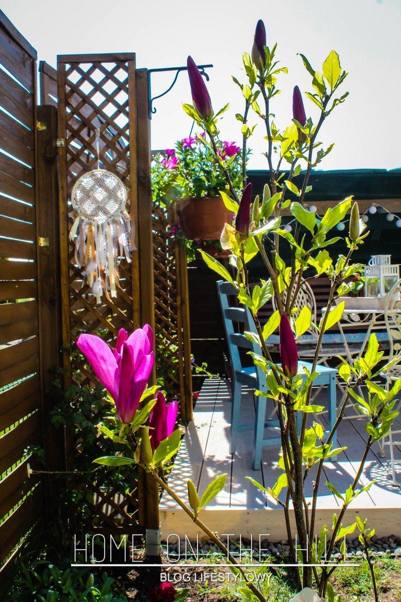 mały ogródek przy mieszkaniu