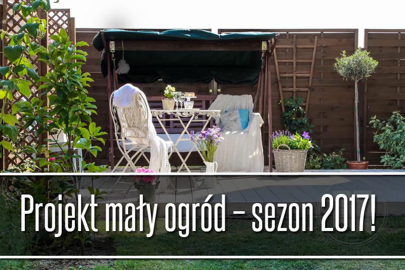 projekt mały ogród