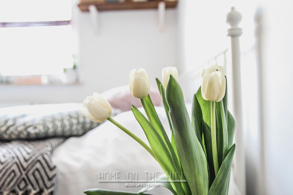 białe-tulipany