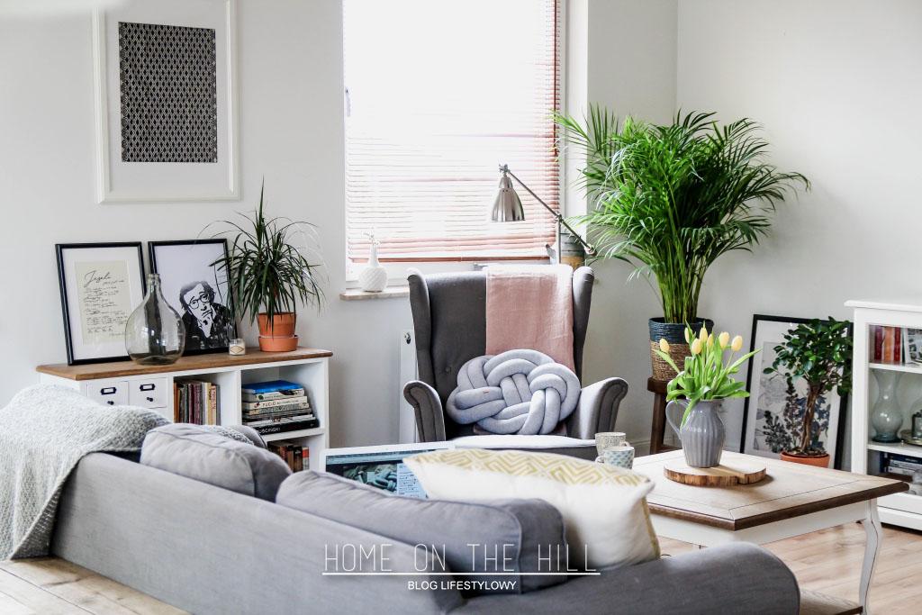 living room scandavian ideas
