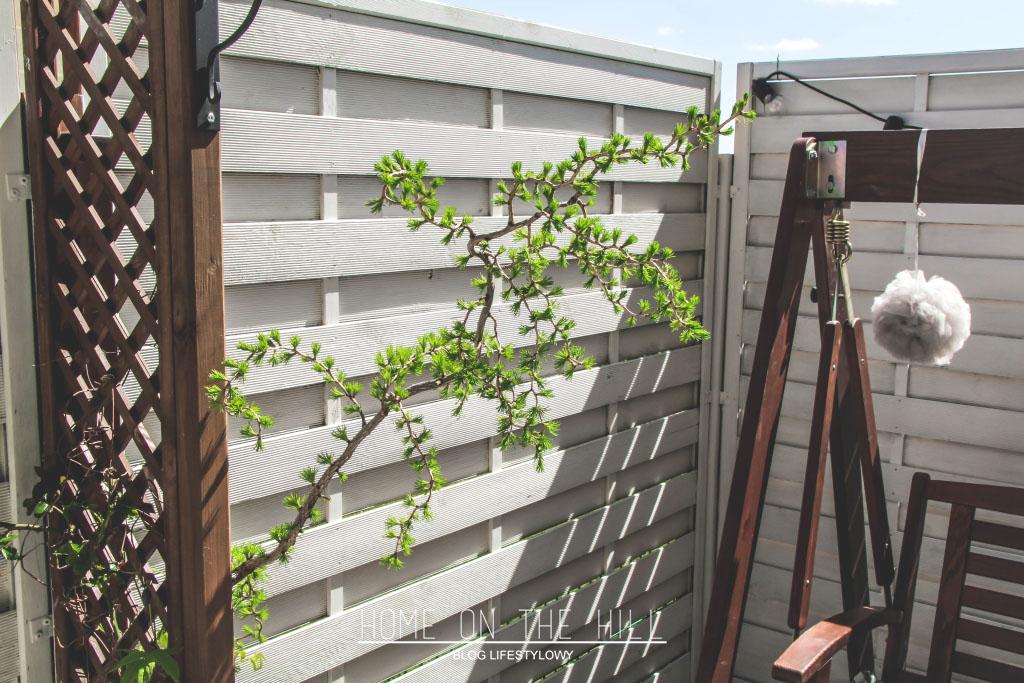 białe ogrodzenie w ogrodzie