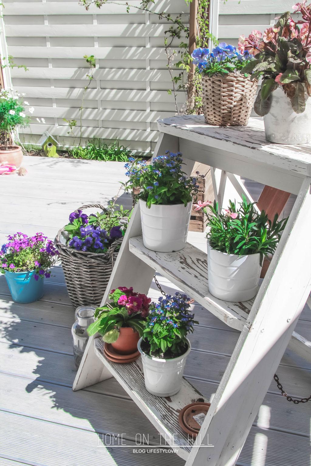 ogród-w-stylu-skandynawskim