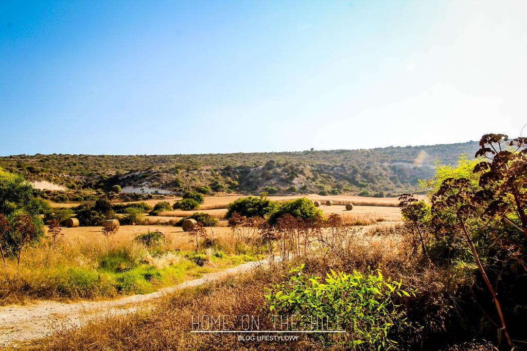 cyprus-landscape