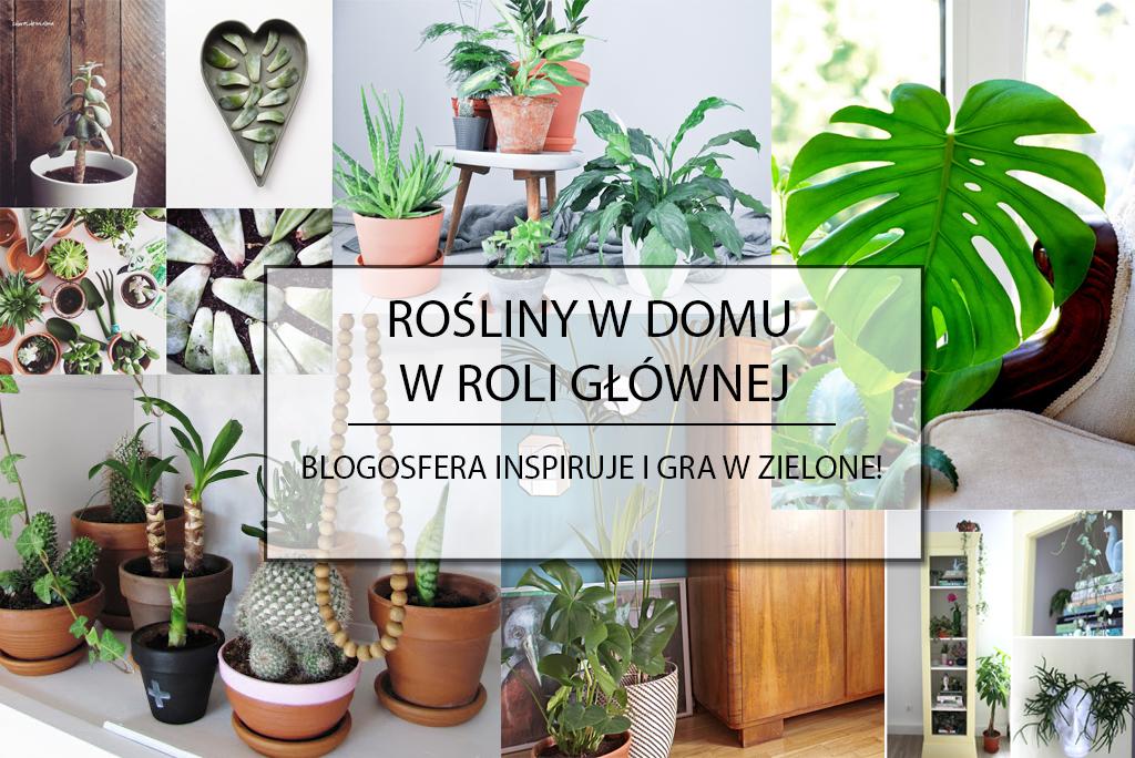 roślinyPlakat