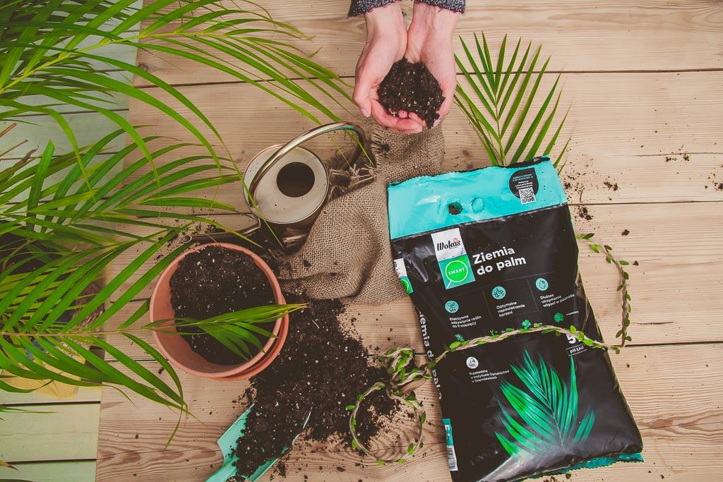 ziemia do roślin doniczkowych