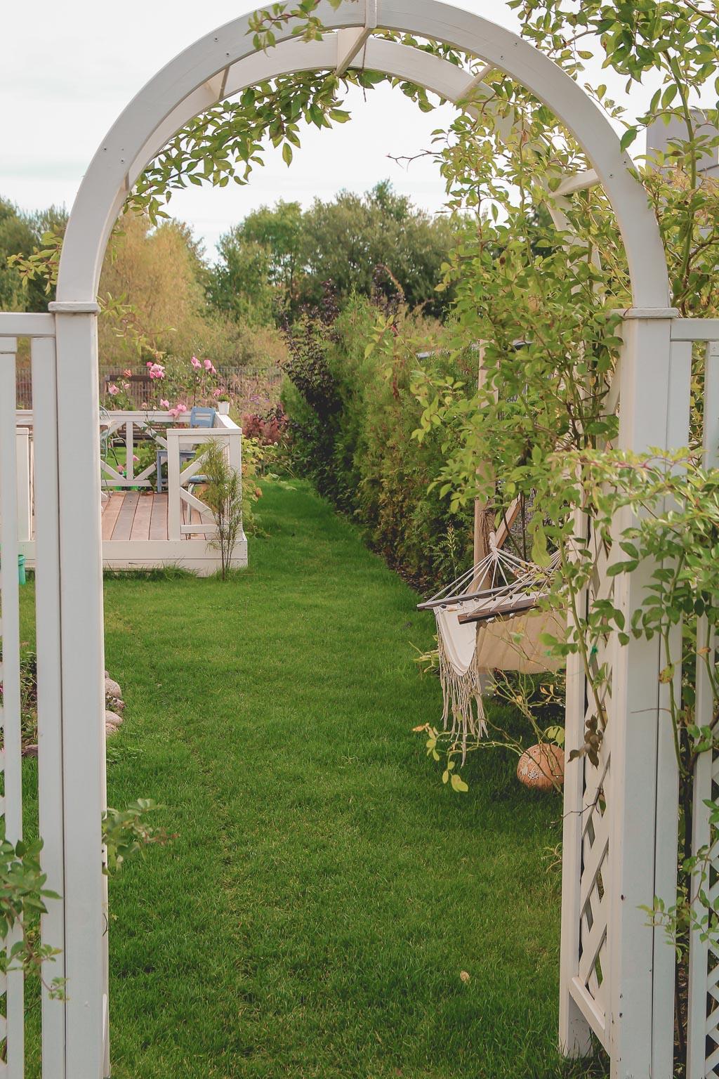 październik w ogrodzie