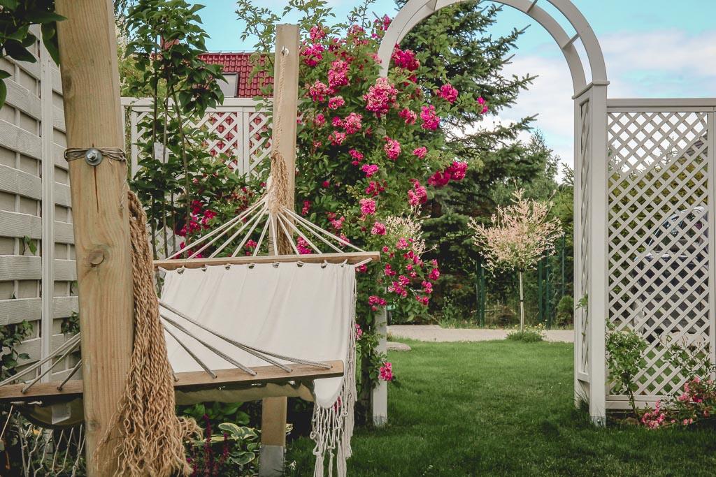 projekt ogród