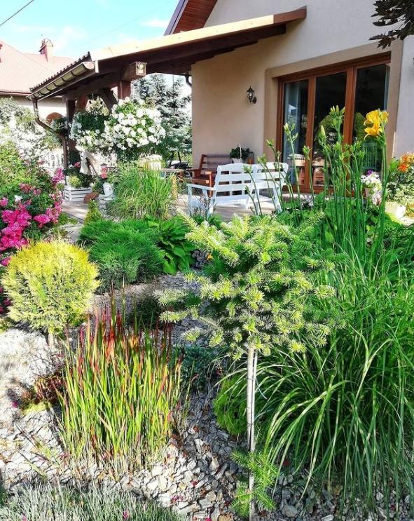 polskie ogrody