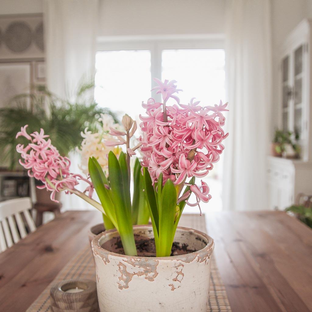 Wiosenne inspiracje do domu
